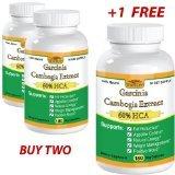 Best Naturals Garcinia Cambogia - WiseLife Naturals Pure Garcinia Cambogia Ultra Extract 60% Review