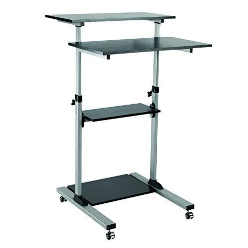 LogiLink BP0070 kompakter und rollbarer Steh-Computer-Arbeitsplatz Silber/schwarz