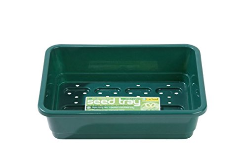 Garland hannusch vert, fond perforé, 23 x 17 x 6 cm-convient pour couvercle (106418)