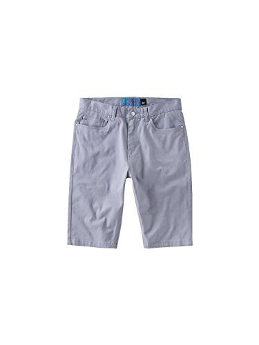 Emerica Herren Shorts Hsu Twill Dusty Blue
