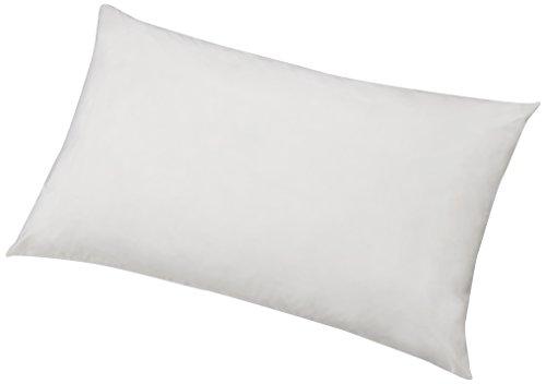 AmazonBasics - Protector de almohada hipoalergénico, blanco, 50 x 80 cm - 2 Unidades