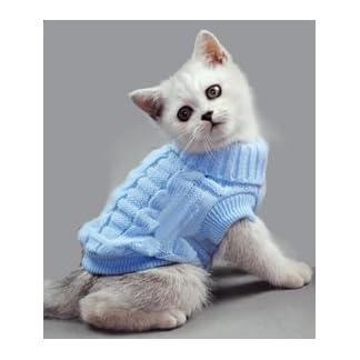 Doggie Style Store Blue Plain Polo Poloneck Cat Pet Kitten Knitted Jumper Knitwear Warm Winter Sweater Size XS Doggie Style Store Blue Plain Polo Poloneck Cat Pet Kitten Knitted Jumper Knitwear Warm Winter Sweater Size XS 31bMM0SvwPL