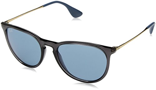 Ray-Ban RB4171 6340F7 Transparent Grey Erika Round Sunglasses Lens Category 2 L