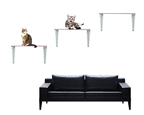 【ᐅᐅ】Katzen Kletterwand 2019 🥇-selbstreinigendes-Katzenklo