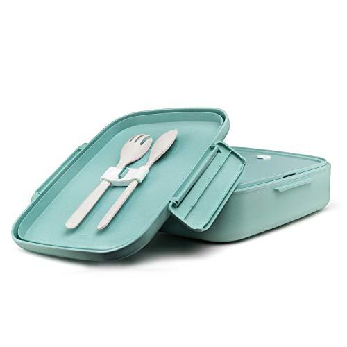 Ecolina Nachhaltige Lunchbox ♻ Biologisch abbaubare Bento Box mit 5 praktischen Unterteilungen. Umweltfreundlich auslaufsichere Brotdose, BPA-frei und plastikfrei (Blau)