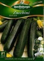 Zucchini Black Jack F1 Hybride Premium