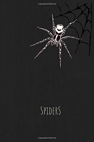 Spiders: Cute Small Halloween Notebook - Healthy Candy Trick or Treat Alternative - Kids Writing Book (MindCandy Halloween Books) (Ideen Halloween-goodie-bags Für)