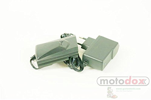 Grizzly Chargeur batterie Souffleur Alb 1815Lion