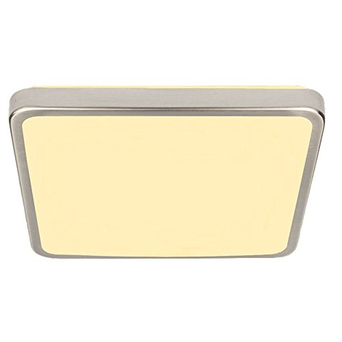 VINGO 12W LED Warmweiß gebürstetem Metall Wohnraumleuchten Wand-Deckenleuchte Innenleuchte Beleuchtung Ultraslim Licht Schlafzimmer Esszimmer Empfangsbereichen [Energieklasse A -