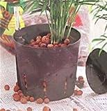Pflanzton Hydro Clay 6-8mm Qualität von FISKARS (5 Liter)