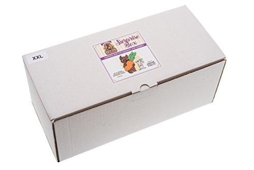 Surprise-box-XXL-Set-of-15-most-popular-snacks-and-treats-for-all-rodents-and-rabbits-More-than-2000-grams-of-high-quality-nutrition