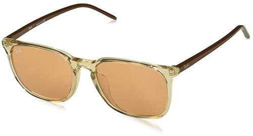 Ray-Ban RB4387F Sunglasses