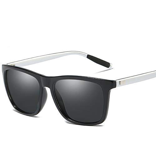 Easy Go Shopping Sport-Sonnenbrille mit polarisierten Gläsern, Unisex-Sonnenbrille, ganzer Satz Sonnenbrillen und Flacher Spiegel (Color : Silber)