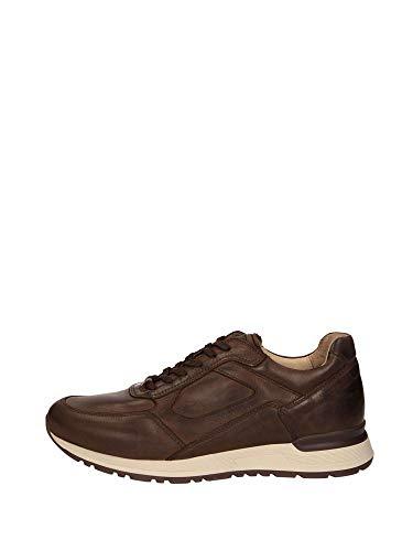 bb5fc2f429dffa Nero Giardini P900830U/300 Sneakers Scarpe Sportive Uomo Lacci Testa di  Moro (42 EU