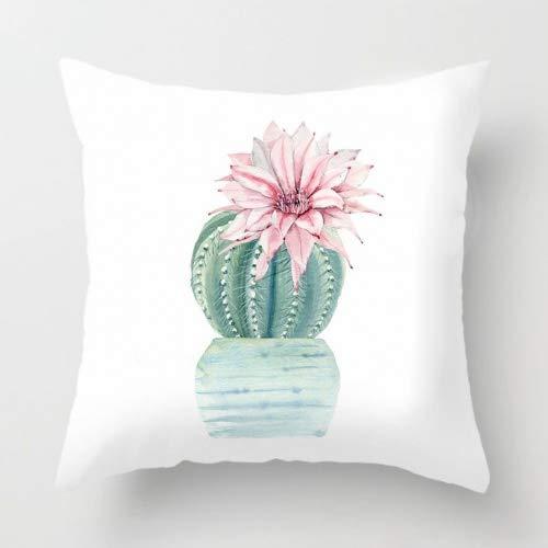 Kaktus Super Soft Kissenbezug Werfen Home Decor 40,6x 40,6cm, Bonsai - Prickly Pear, 16 x 16 inches ()
