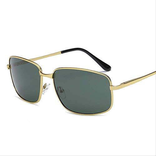 Fahrer Tinte (GLQA Sonnenbrillen Klassische Herren Polarisationsbrille Fahrer Sonnenbrille Retro SonnenbrilleGoldbox Tinte Grün)