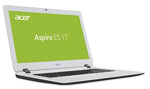 Acer ES1 (17,3 Zoll) Notebook (Intel N4200 Quad Core