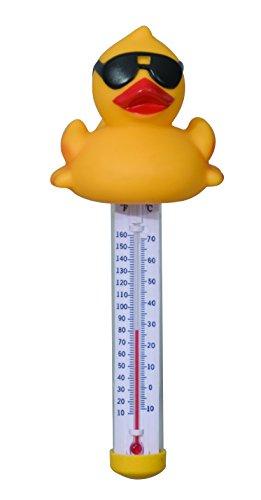 Steinbach - Thermomètre Flottant Canard Derby, 7000