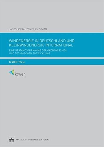 Windenergie in Deutschland und Kleinwindenergie international: Eine Bestandsaufnahme der ökonomischen und technischen Entwicklung (k:wer-Texte)