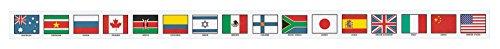 mcdonald-publishing-mc-y1512-banderas-de-naciones-unidas-brainy-frontera-grado-4-a-9-323-cm-de-ancho