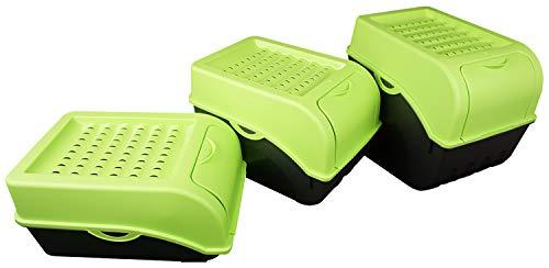 Novaliv Gemüsebox Set grün Kartoffel Aufbewahrungsbox Vorratsdoseset Zwiebeltopf Knoblauchbox Obsttopf