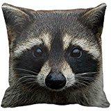 iExia Generic Custom Taie d'oreiller avec remplissage Cute Jeunes Raton laveur visage Masque et Stare Close Up 18 x 18