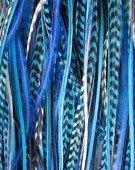 Sexy Sparkles Extensions de cheveux en plume avec 2 micro perles de silicone 15,2- 30,5cm