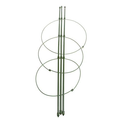 Lazder - tutori per piante, telaio di supporto conico, 45 cm, 60 cm, supporto di traliccio conico per piante da giardino
