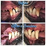 Emmi-Pet Ultraschall-Zahnbürste für Haustiere...Vergleich