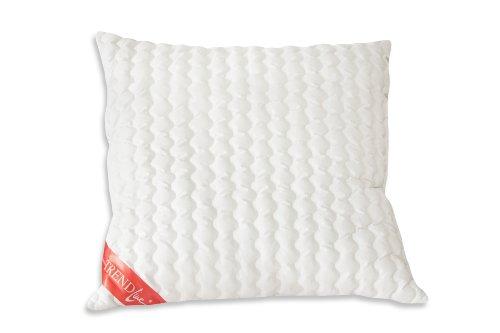 Badenia Bettcomfort 03875410123 Trendline Basic - Almohadón Lavable a 90 ºC (80...