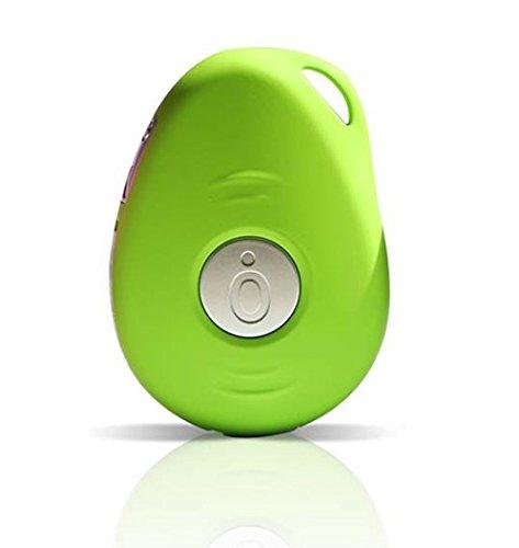 HoIP Pebbell GPS Alarm 3