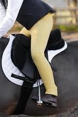 31c3%2BhbmfgL BEST BUY UK #1Shires Junior Saddlehugger Jodhpurs Canary 5/6yrs price Reviews uk