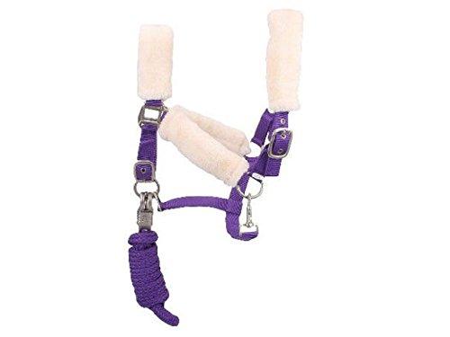 Pferde-Halfter Set Fell Nylon Zaumzeug mit Führ-leine und Panikhaken 2m - Neopren Unterlegung - Pferde-Trense (Lila, Cob / Vollblut) (Pferd Zug Kostüm)