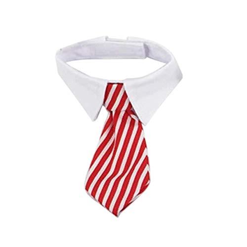 EROSPA® Hunde-Halsband Krawatte mit Kragen - Halsbinde/Schlips (Rot/Weiß) - Krawatten Krawatten