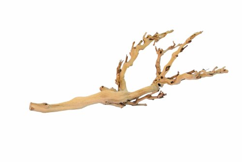 Exo Terra Reptile Forest Branch Large-Medium -