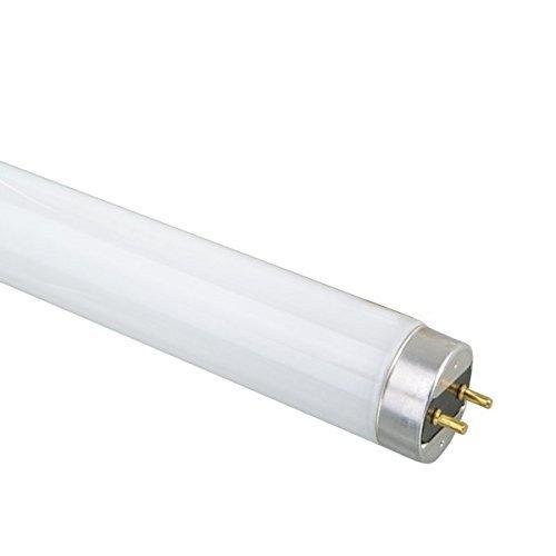 Ushio BC3308 3000265 - F25T8/841 - 25W - T8 - 2250 Lumens - 4100K - CRI 86 - 800 Series Tri-Phosphors - Case of 25 by Ushio -