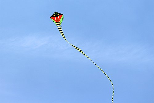 Preisvergleich Produktbild Hongyun Easy-fly 30M Snake Kite with Flying Tools from Weifang City, Outdoor Flight sports Toys for Kids&Adults