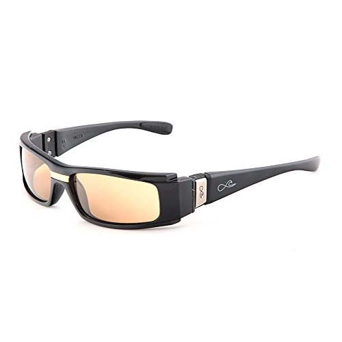FULLSENSATION ® FS2 C2 / 3 B - Fab. Frankreich - Polarisierte Photochrome Sonnenbrille - High-End -