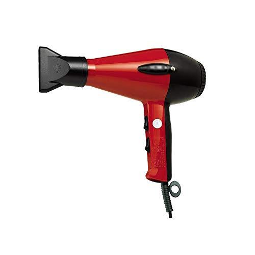 FENXIMEI Professioneller ionischer Haartrockner mit Diffusor, Salon-leichte