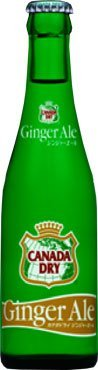207mlx24-dieses-geschft-fr-coca-cola-canada-dry-ginger-ale-regelmige-flasche