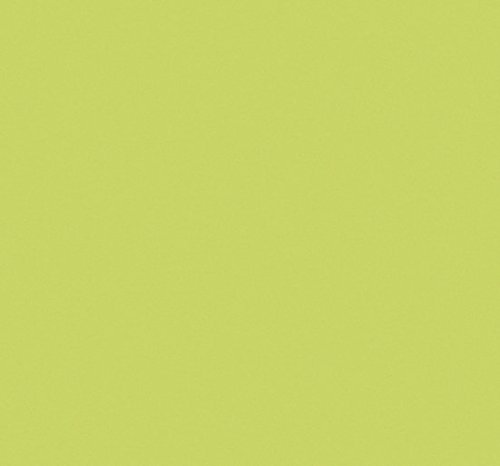 Venilia 53298 Klebefolie Unimatt, PVC, anisgrün, 45  x  200  x  0,1 cm