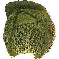 Obst & Gemüse Bio Wirsing (2 x 1 Stk)