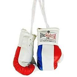 RingMasterUK Mini gants de boxe à suspendre dans la voiture, france