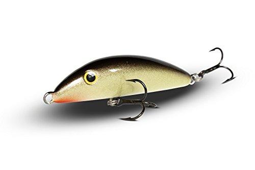 real-winner-artificiale-affondante-10-cm-esche-artificiali-pesca-c10-gro
