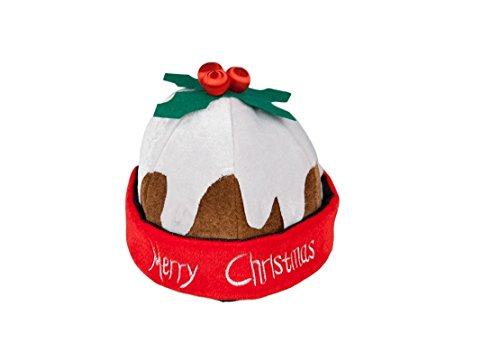 t for Christmas Fancy Dress Accessory (Christmas Pudding Kostüm)