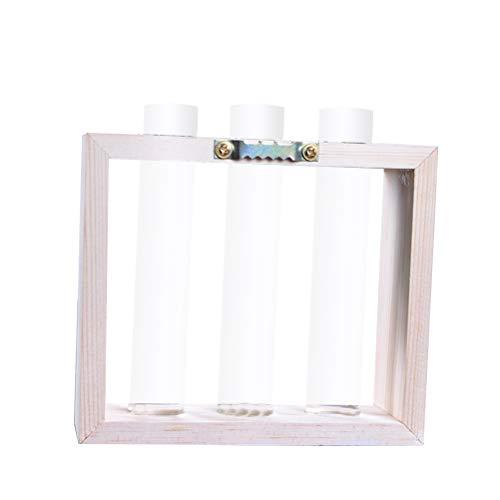 Yardwe Wandbehang Pflanzen Reagenzglas Glas Pflanzer Blume Knospe Vase Wasserkulturpflanzen Topf Blumenvase