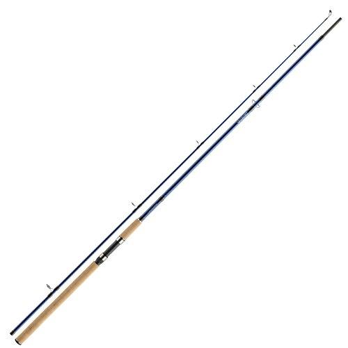 Daiwa Seah sotto x Sea Trout 3,10m 10–40G canna da pesca alla trota
