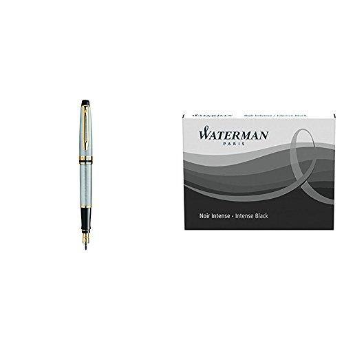 Waterman Expert 3 Penna Stilografica Stainless Steel Gold Trim, Finiture Cromate, Pennino Medio + Ricariche D'Inchiostro Nero