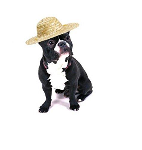 Xinjiener Hundepullover Retro Bauer Haustier Hut Katze Hund niedlich Strohhut S