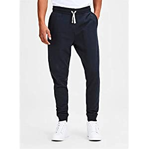 JACK & JONES Herren Jjeholmen Sweat Pants Noos Hose